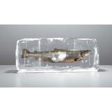 Рыба свежемороженая фасованная в вакуум
